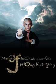Master of Shadowless Kick: Wong Kei-Ying