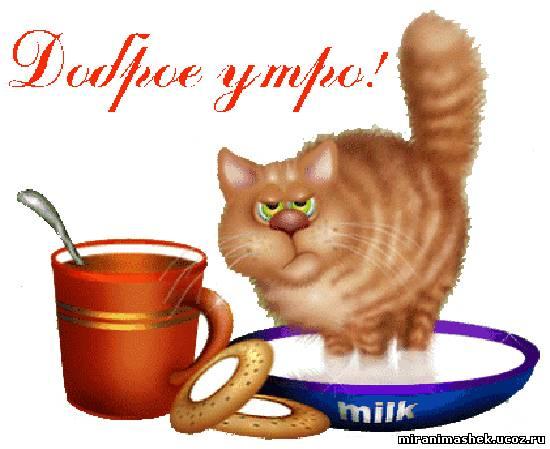 Доброе утро Картинки про утро на рабочий стол, url код ...