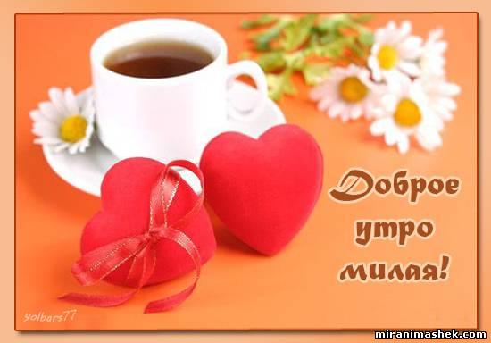 Доброе утро милая Картинки про утро на рабочий стол, url ...