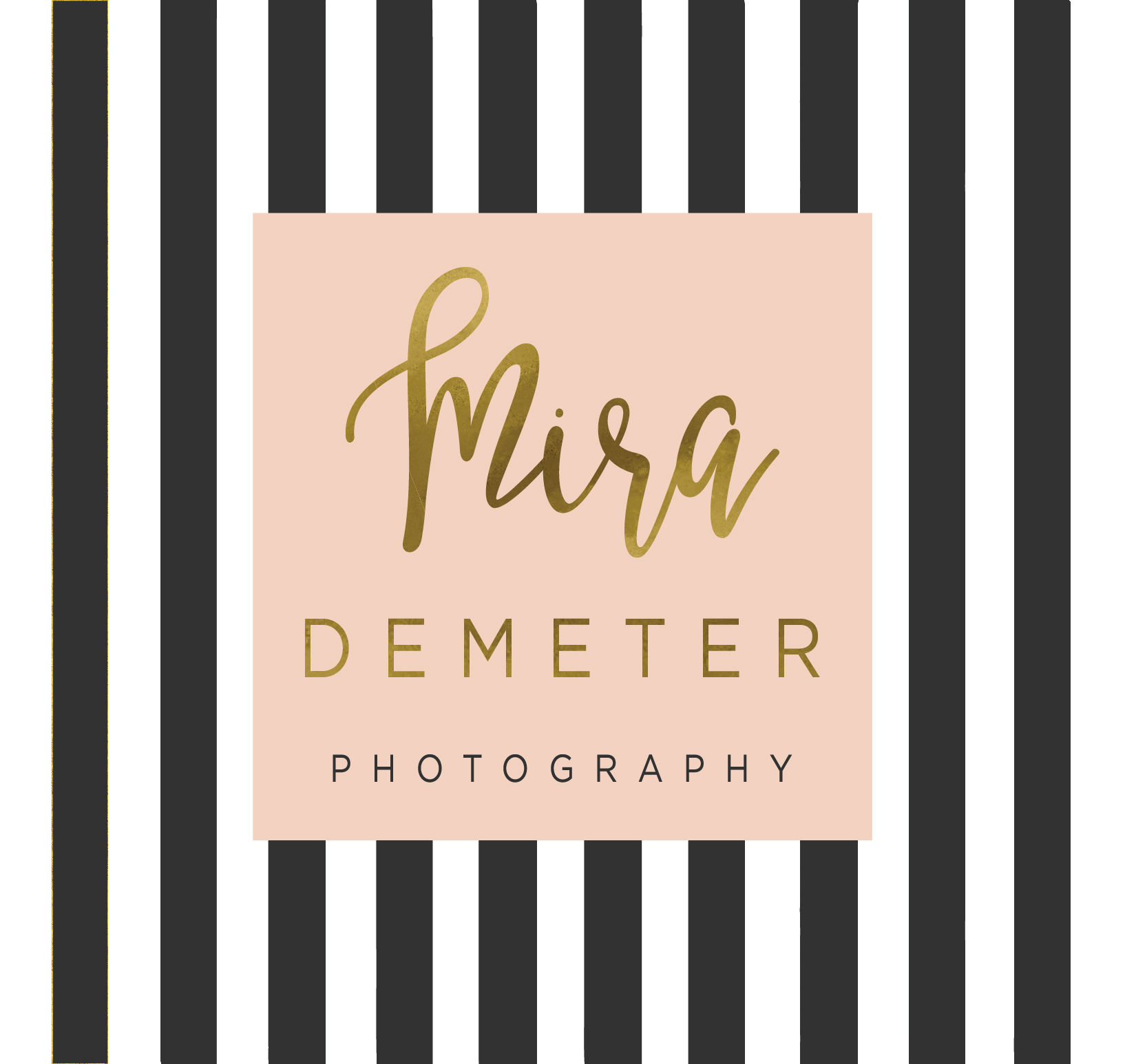 Mira Demeter Photography Logo photographer London Enfield family children photographer
