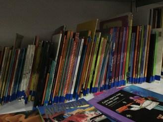 Los libros fueron una de las principales atracciones de los chicos. Crédito: Milagros Álvarez Cañedo
