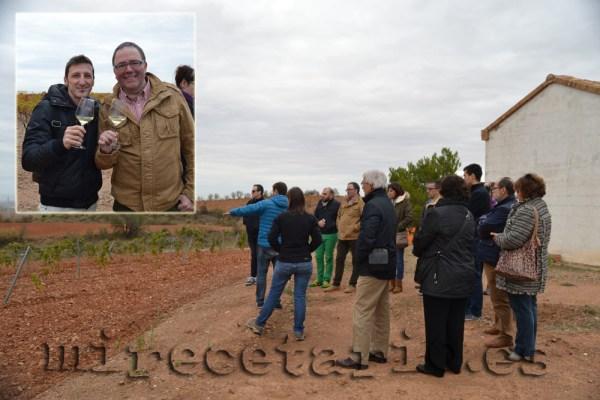 Visita a las viñas y Cava aragonés