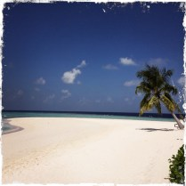 Man kann den Bewohnern nur wünschen, dass die Malediven so lange wie möglich erhalten bleiben! Experten befürchten, dass sie aufgrund dem Steigen des Meeresspiegels irgendwann verschwinden werden. Auch deswegen muß unsere Generation auf die Umwelt achten, damit so ein besonderes und wertvolles Naturphänomen nicht verschwindet. Für den Erhalt sind wir verantwortlich! (Foto: balkanblogger)