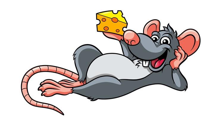 Почему гороскоп начинается с Крысы