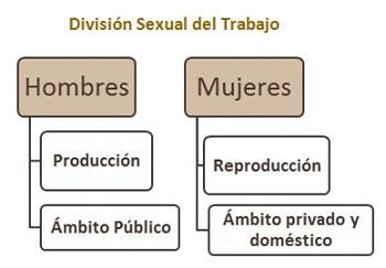 Division-sexual-trabajo