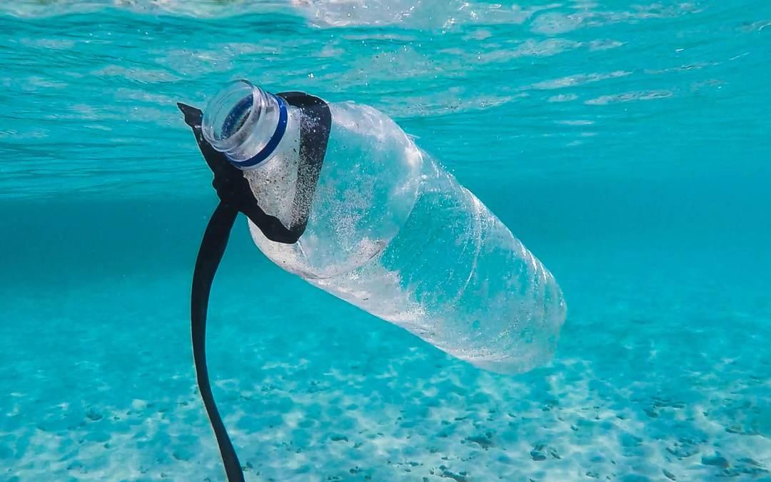 ¿Es seguro rellenar las botellas de plástico?