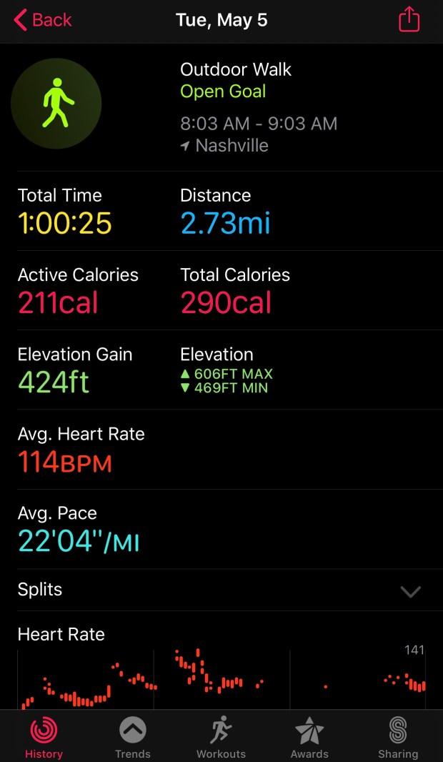 Walking work out statistics