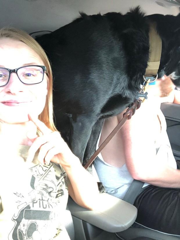 Car selfie with dog
