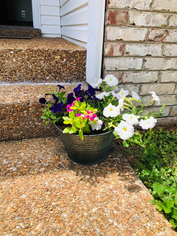 Flower pot on front porch