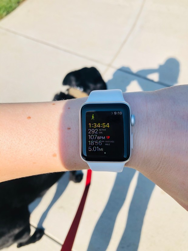 5 mile walk statistics Apple Watch
