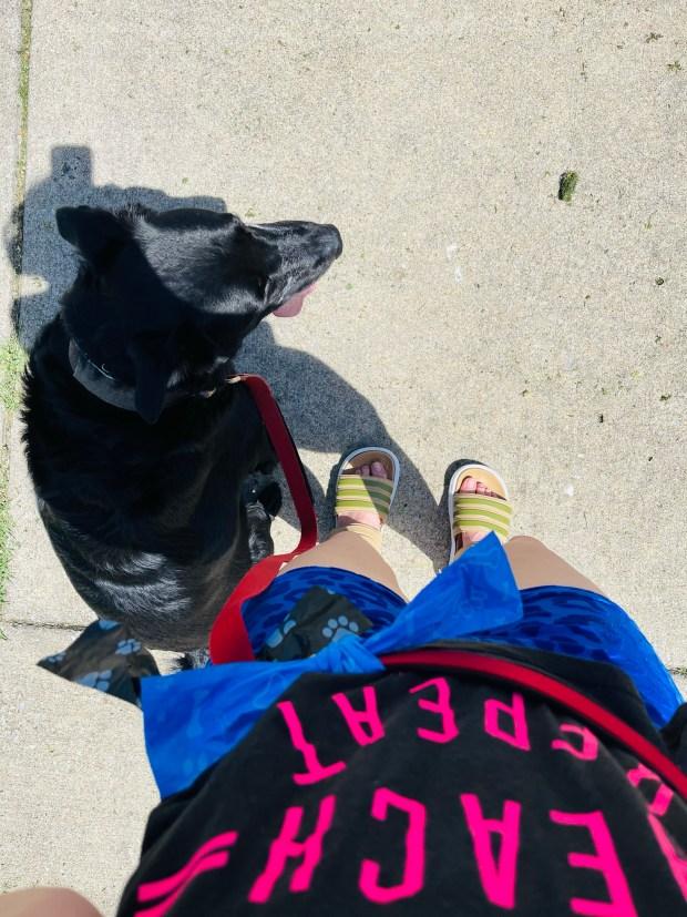 taking dog on walk in activewear
