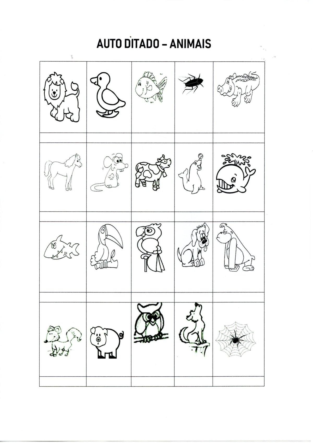 Autoditado-Escreva os nomes dos Animais