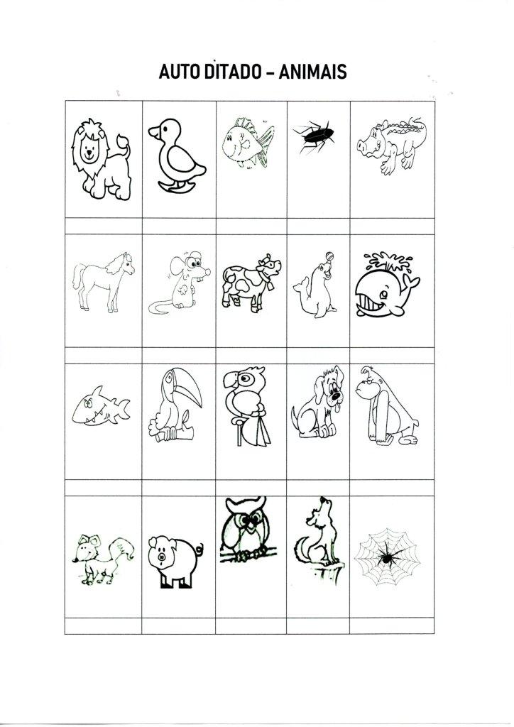 Auto-ditado-Escreva os nomes dos Animais