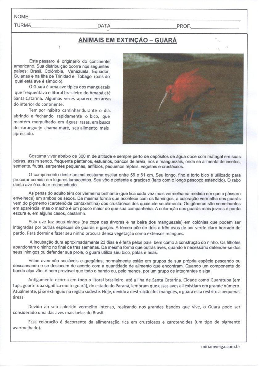 Animais em extinção-Guará-Texto para Leitura