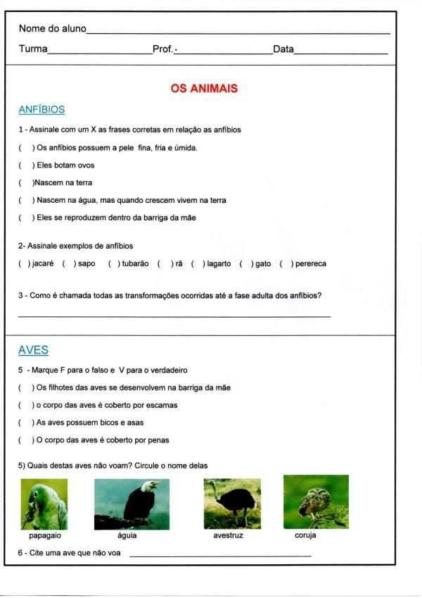 Teste de Aprendizagem-Animais-Parte 1-Folha 1