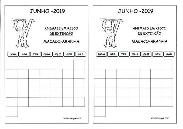 Calendário 2019 Junho-Aluno