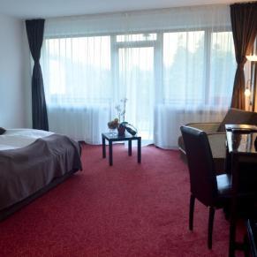 Hotel Cumpatul Oferta Revelion (4)
