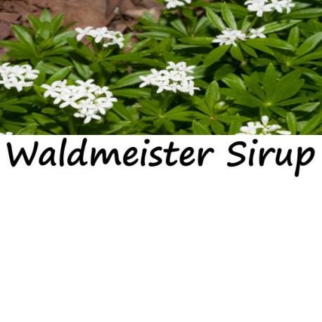 waldmeister_einzel-e1481716319432