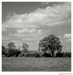 LowerWithington_006