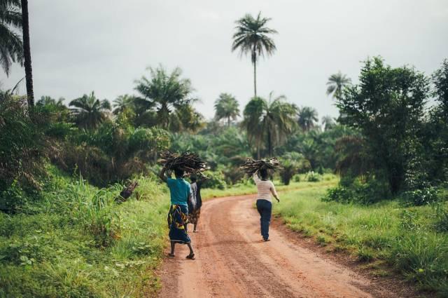 Women carrying timber in Sierra Leone