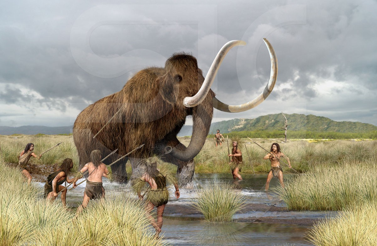 Born To Hunt Mammoths One Things Which Many People Don T