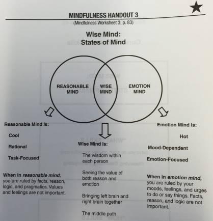 Znalezione obrazy dla zapytania: dbt mindfulness handout 3