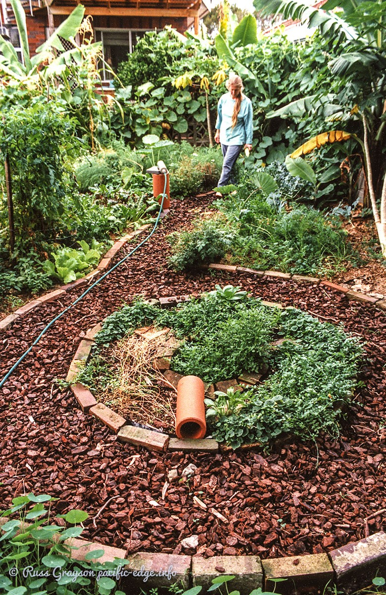 Designing a small urban garden - PERMACULTURE 3.0 - Medium on Backyard Permaculture Design id=66832