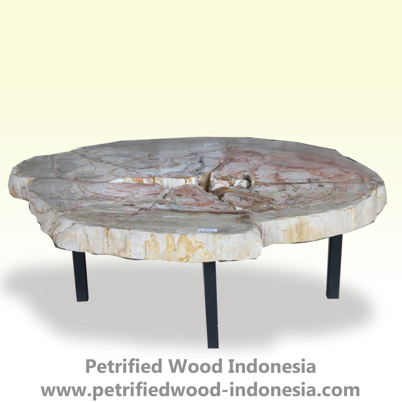 petrified wood coffee table petrifed