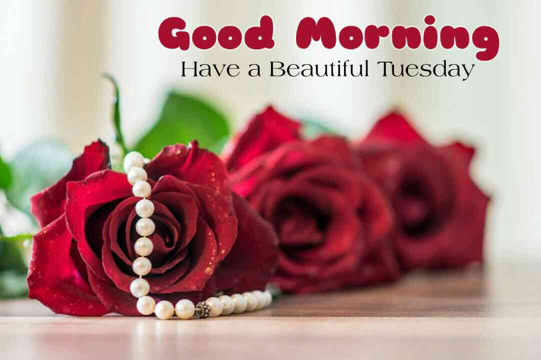 Good Morning Tuesday Good Morning Tuesday Blessings By Raj Malhotra Medium