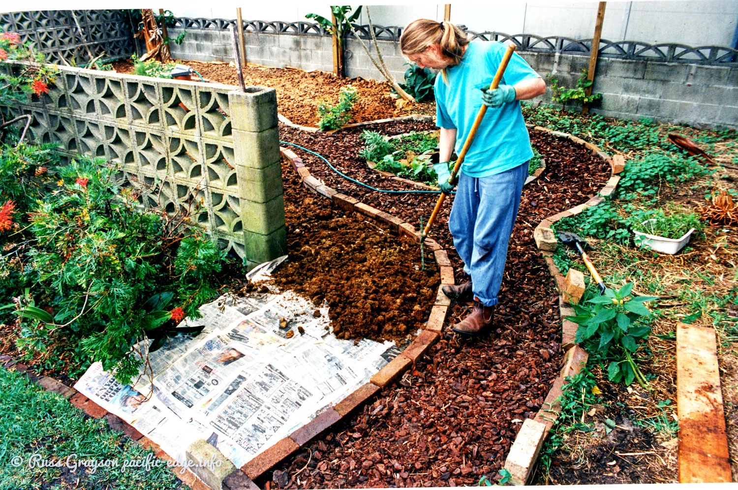 Designing a small urban garden - PERMACULTURE 3.0 - Medium on Backyard Permaculture Design id=13774