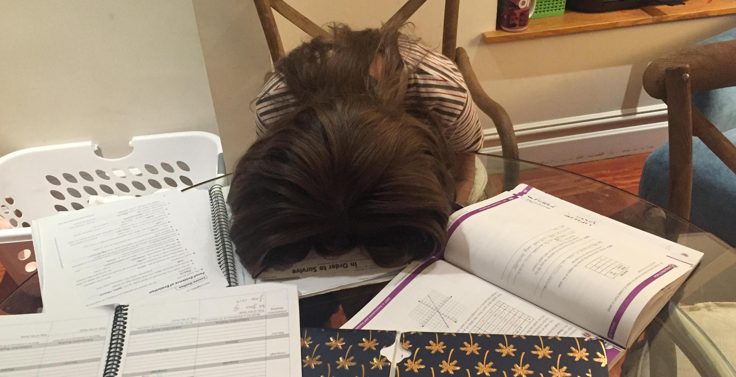 My 11 Year Old Daughter Ends Her Relationship With Homework