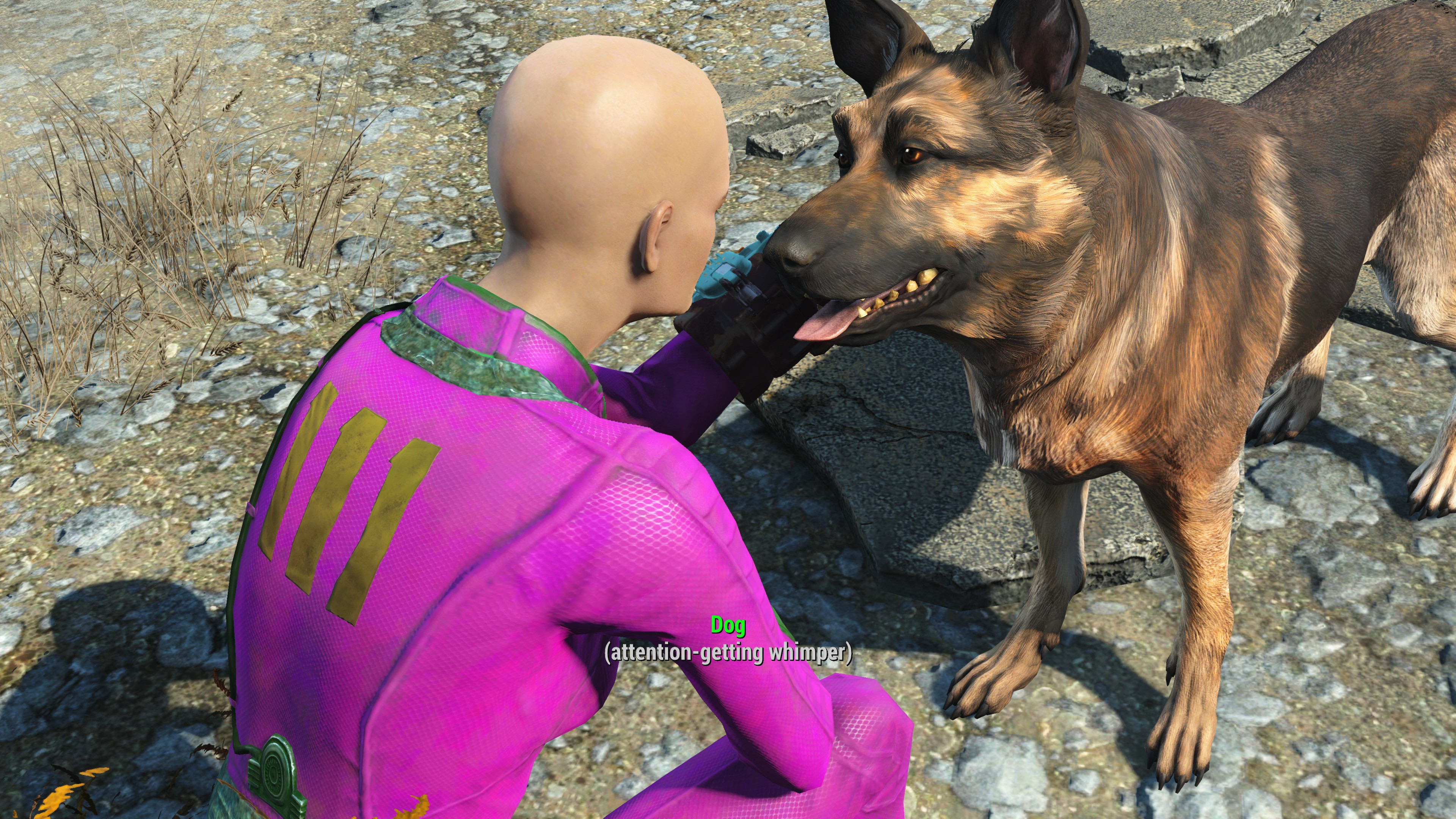 Susan's Fallout 4 character petting Dogmeat, a German Shepherd character/companion.