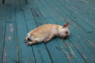 """very tired""的图片搜索结果"
