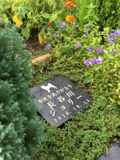 ミニ個別墓標準