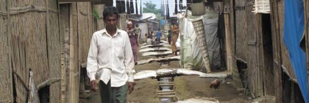 The Burmese Experiment