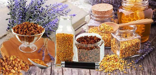 Recept a méhek a prostatitisből Ichthyol a Prostatitis Vélemények