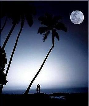 Moonlight Kissing