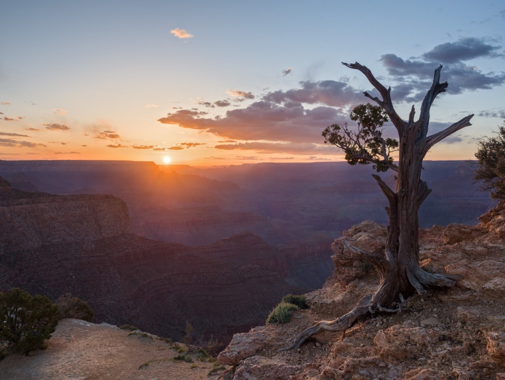 Blick in den Grand Canyon in den USA