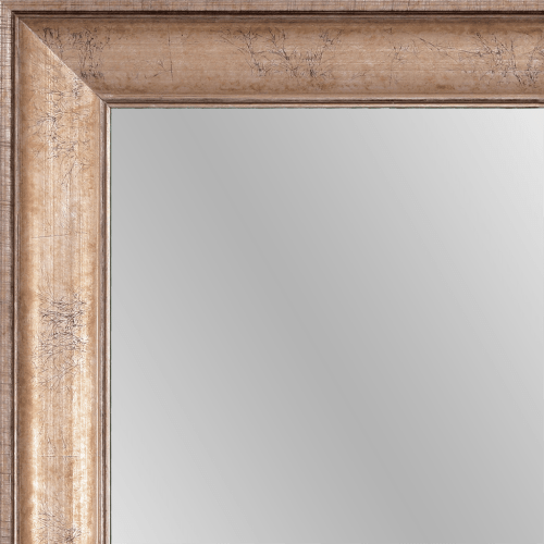 1568 Champagne Framed Mirror