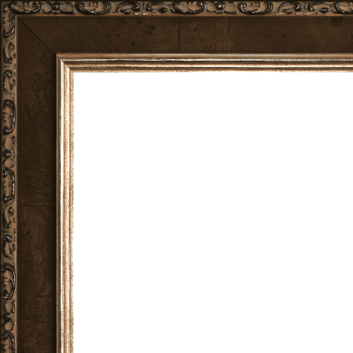 2429 mirror frame