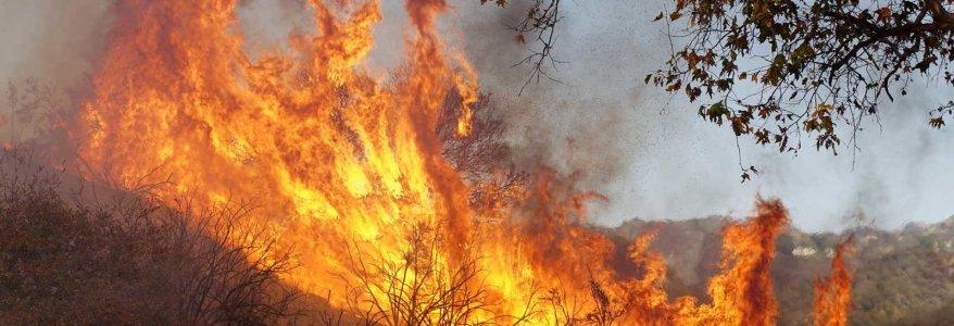 Uttarakhand नैनीताल और आसपास विकराल हुई जंगल की आग, बिजली ठप, सड़क पर गिर रहे पत्थर