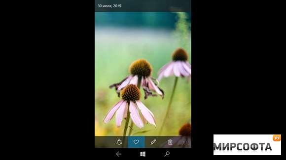 Фотографии (Windows 10) скачать бесплатно