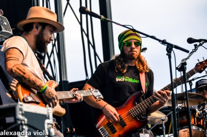 Twiddle and Ripe in Buffalo, NY 6-28-2019 (13 of 29)