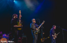 Blue Oyster Cult - Manchester, NH - Palace Theater 2-6-2020 (15 of 19)