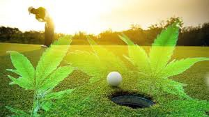 "Olde Saratoga Miniature Golf Opens ""Puff Puff Putt"" Weekly Marijuana Sessions"