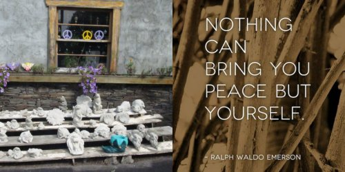 Reflections: Take Two For Peace...
