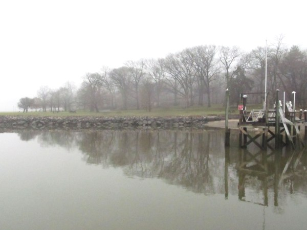 Writing 201:From A Journey Through Fog... Reflections on a Foggy Day