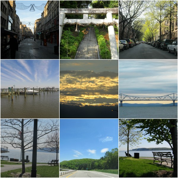 Weekly Photo Challenge: EARLY BIRD - morning everywhere