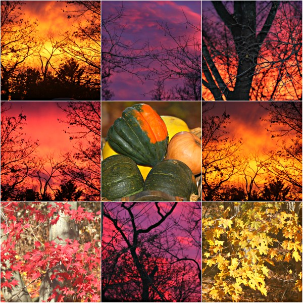 Motivation Mondays: Happy Thanksgiving - Transcendent Moments of Awe in the Sky #mondaymotivation