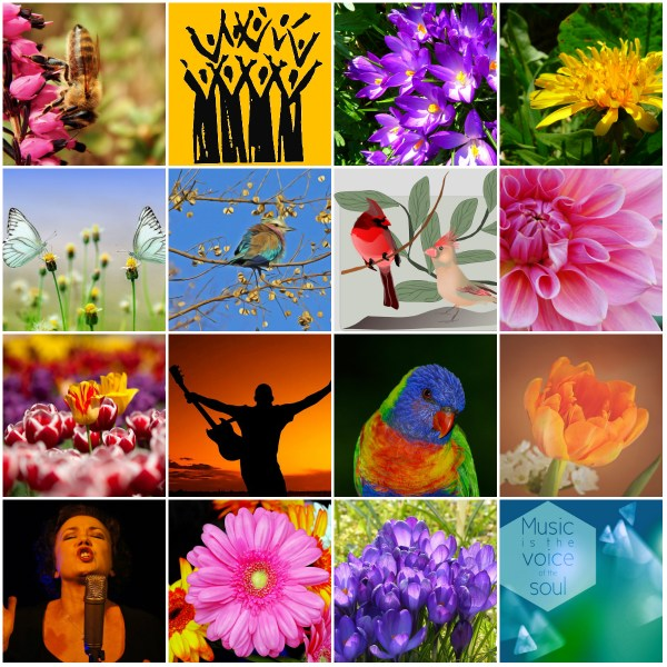 Motivation Mondays: Sing Your Song